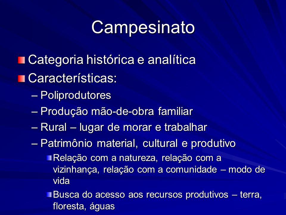 Campesinato Categoria histórica e analítica Características: