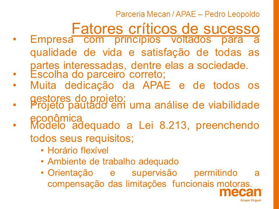 Parceria Mecan / APAE – Pedro Leopoldo Fatores críticos de sucesso