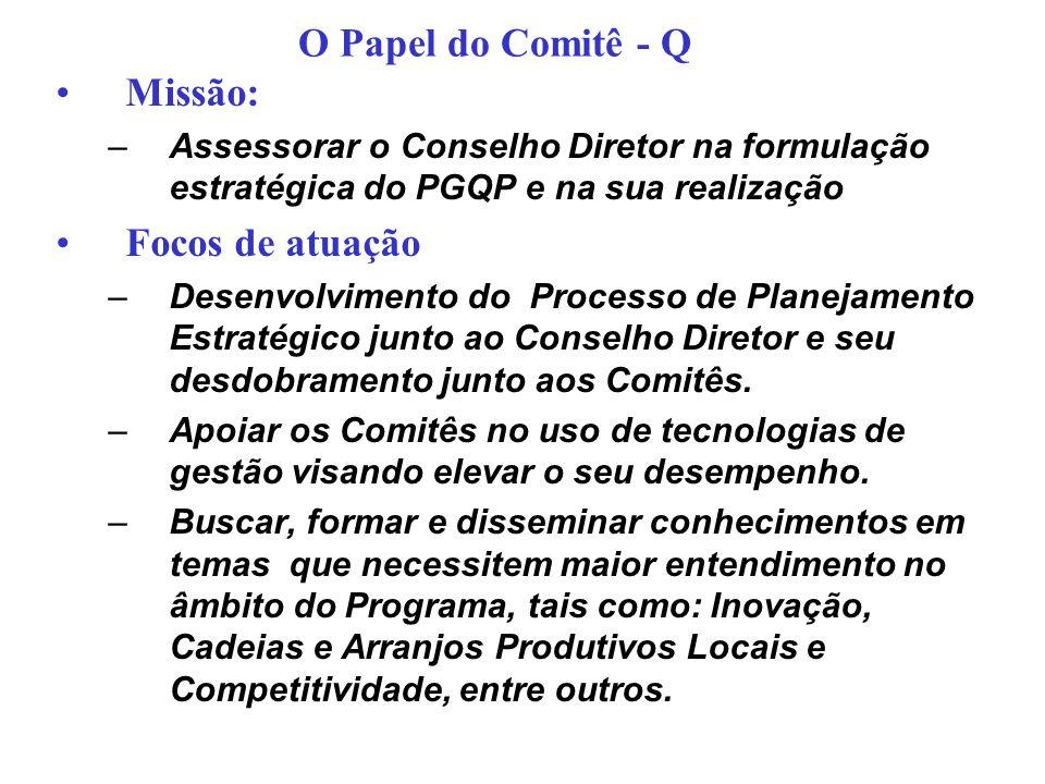 O Papel do Comitê - Q Missão: Focos de atuação