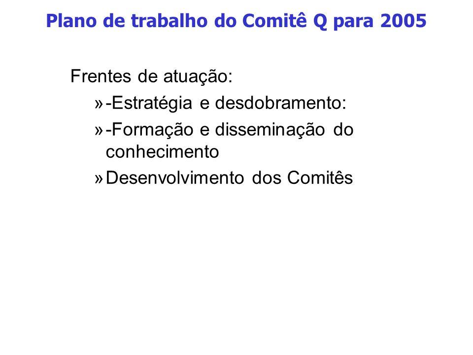 Plano de trabalho do Comitê Q para 2005