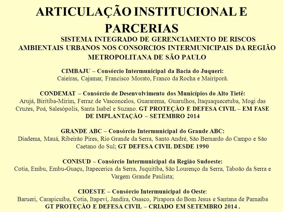 ARTICULAÇÃO INSTITUCIONAL E PARCERIAS