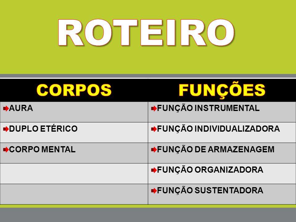 ROTEIRO CORPOS FUNÇÕES AURA FUNÇÃO INSTRUMENTAL DUPLO ETÉRICO