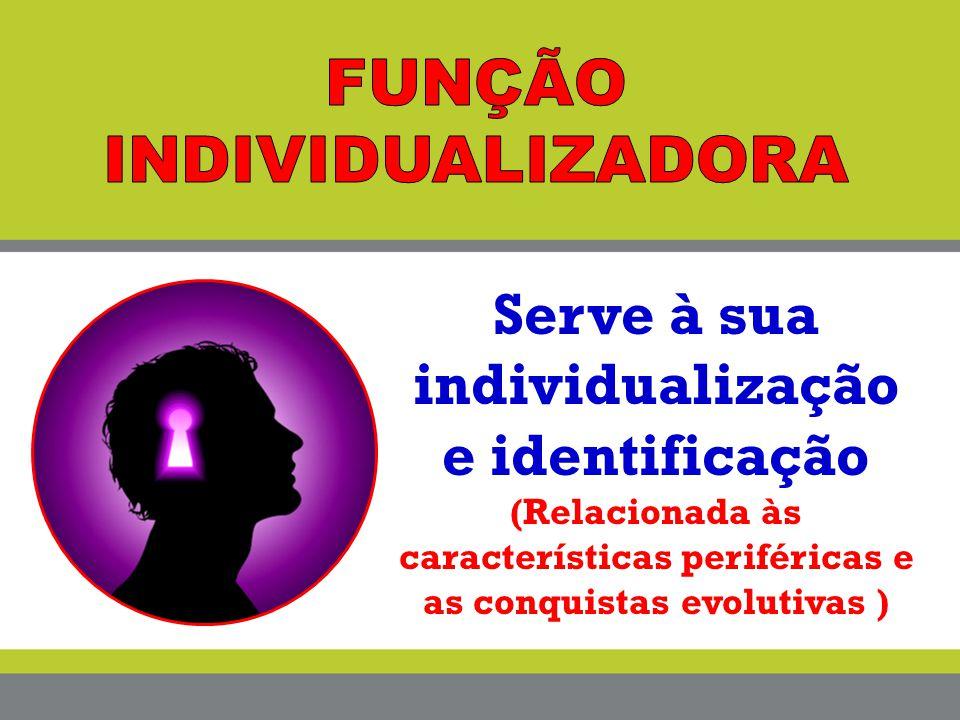 Serve à sua individualização e identificação