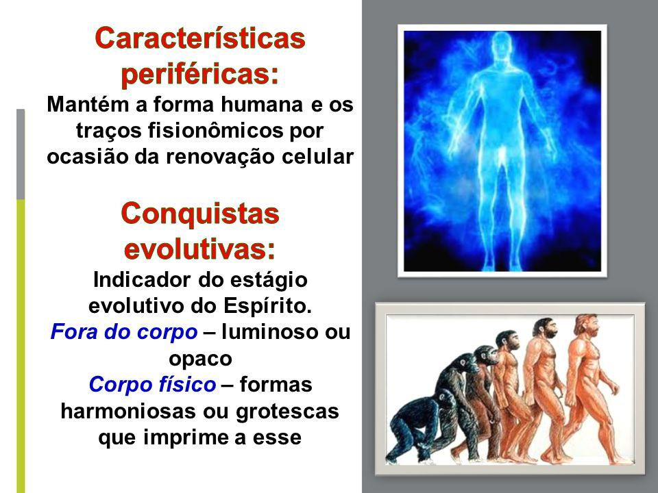 Características periféricas: Conquistas evolutivas: