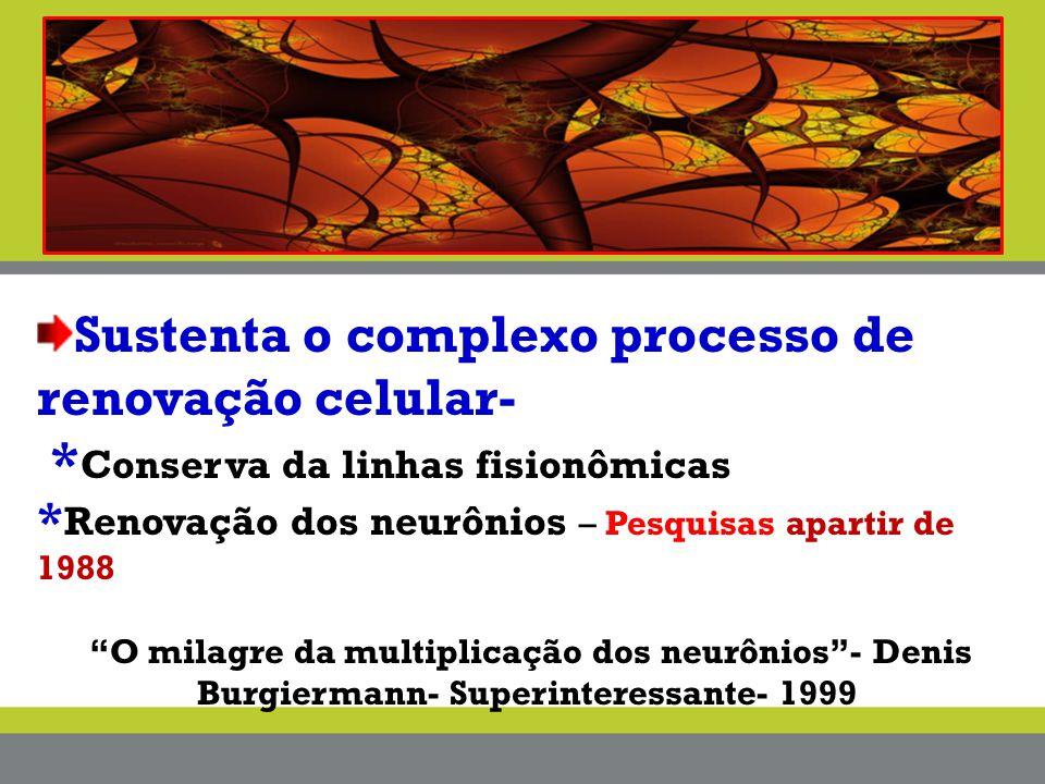 Sustenta o complexo processo de renovação celular-