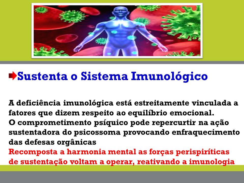 Sustenta o Sistema Imunológico