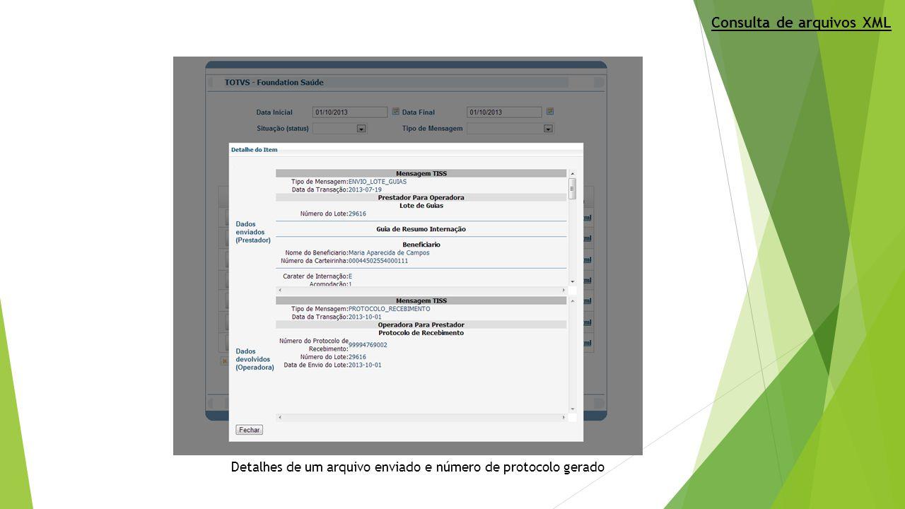 Detalhes de um arquivo enviado e número de protocolo gerado