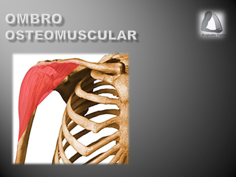 Ombro osteomuscular