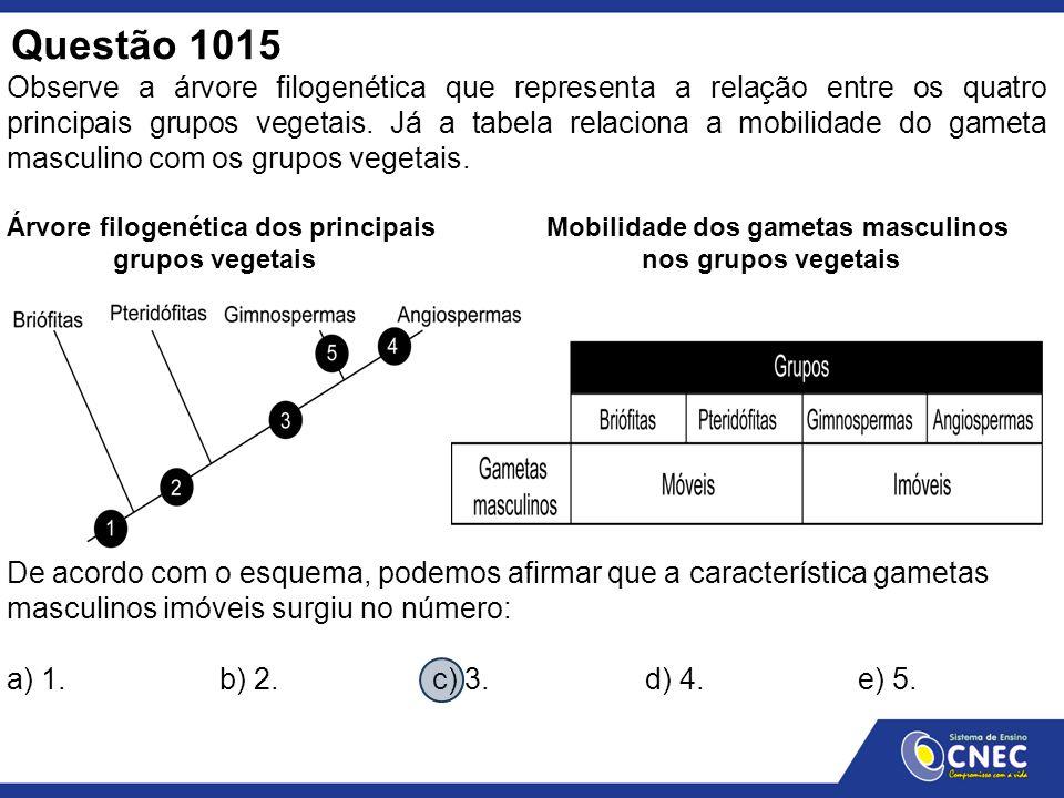 Questão 1015