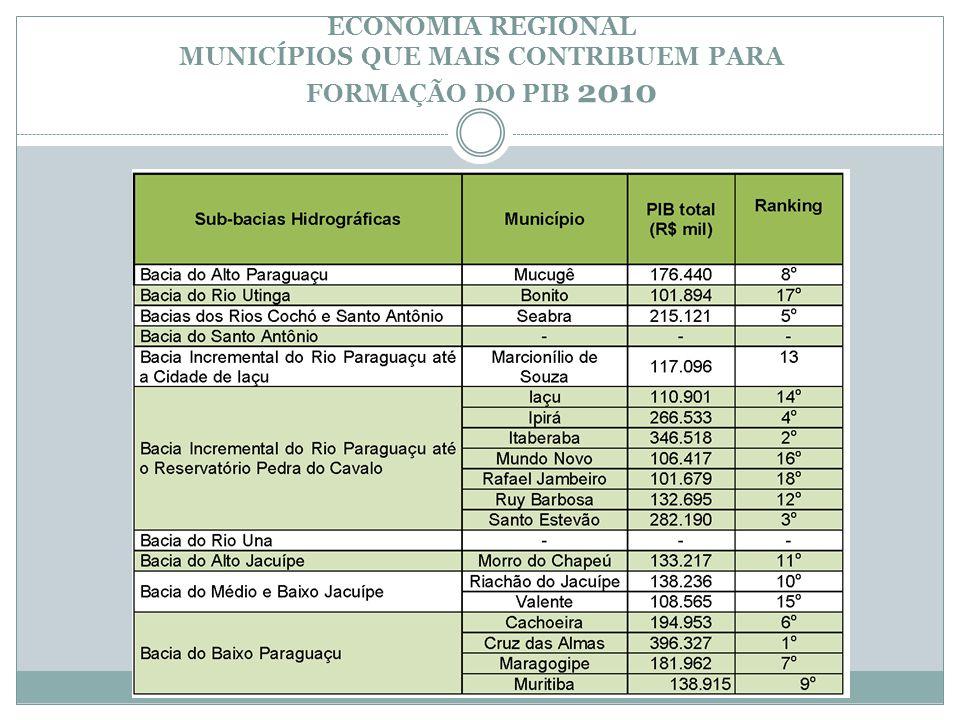 ECONOMIA REGIONAL MUNICÍPIOS QUE MAIS CONTRIBUEM PARA FORMAÇÃO DO PIB 2010