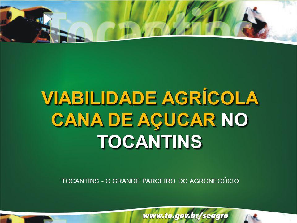 VIABILIDADE AGRÍCOLA CANA DE AÇUCAR NO TOCANTINS