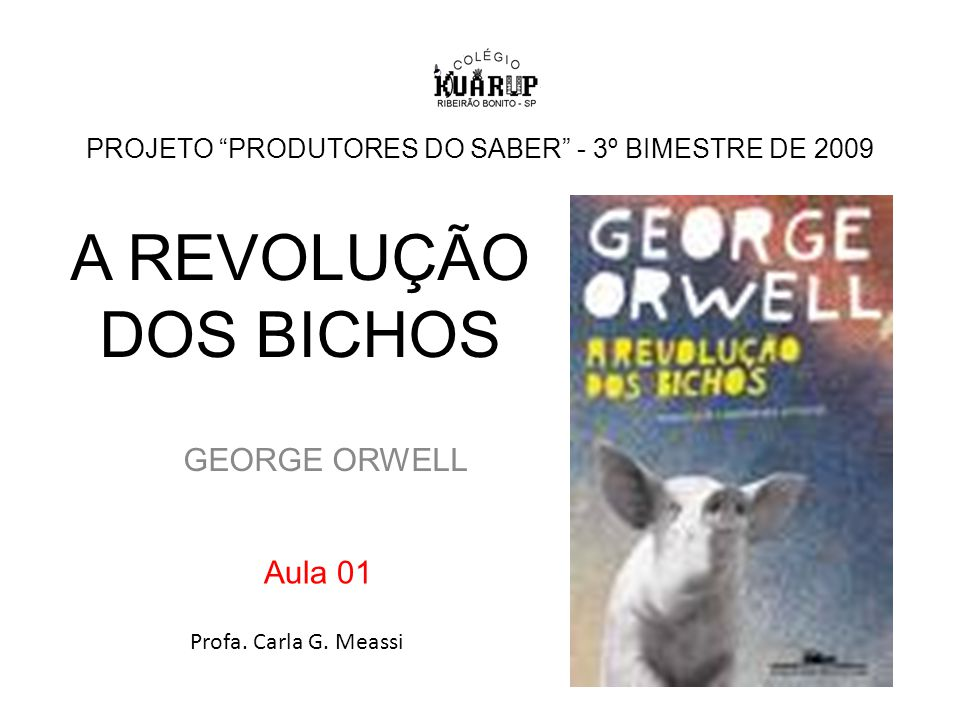 PROJETO PRODUTORES DO SABER - 3º BIMESTRE DE 2009