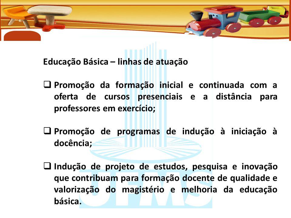 Educação Básica – linhas de atuação