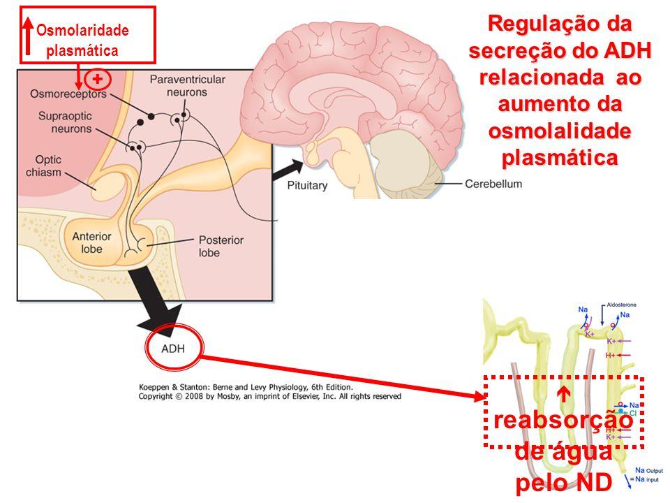 Osmolaridade plasmática