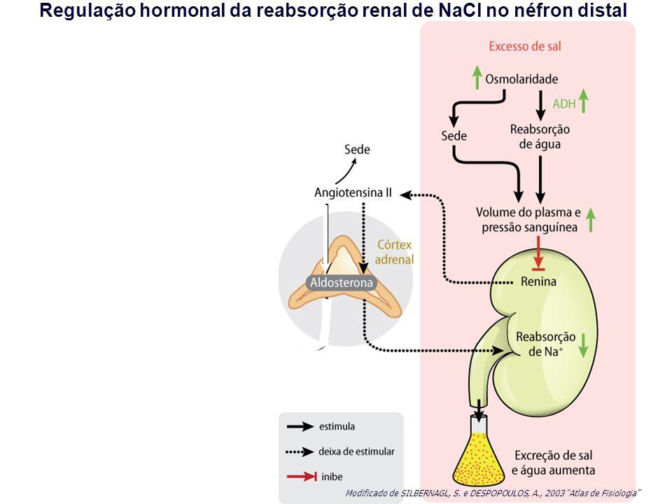 Regulação hormonal da reabsorção renal de NaCl no néfron distal