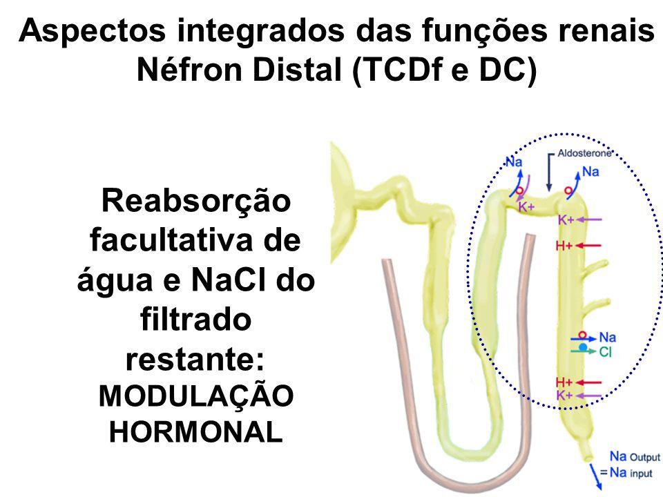 Aspectos integrados das funções renais Néfron Distal (TCDf e DC)
