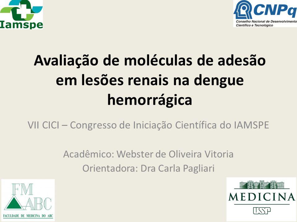 Avaliação de moléculas de adesão em lesões renais na dengue hemorrágica