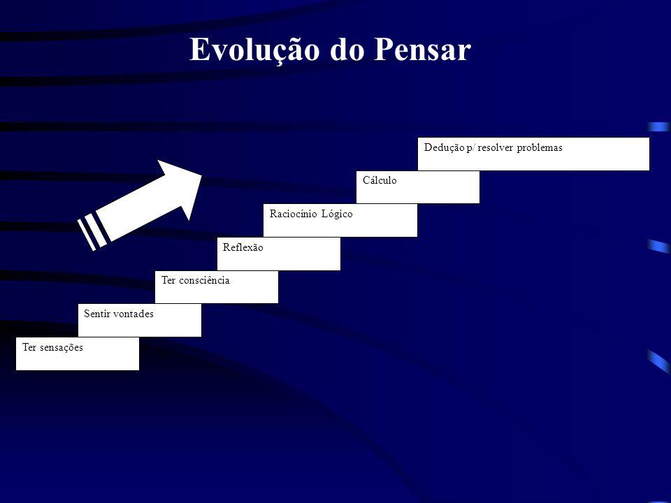Evolução do Pensar Dedução p/ resolver problemas Cálculo