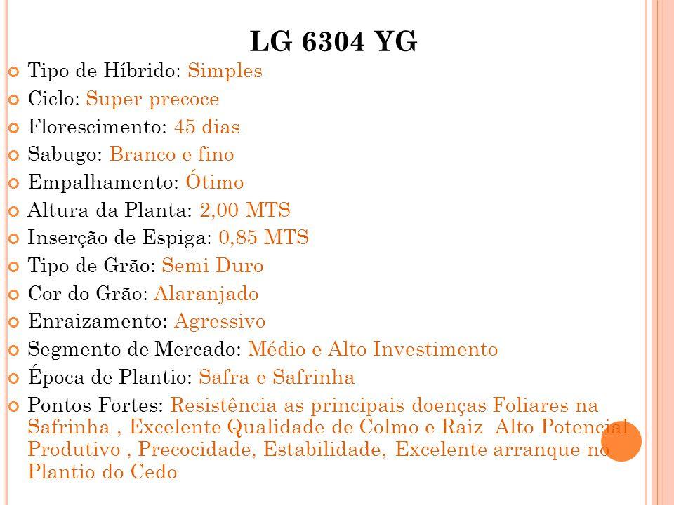 LG 6304 YG Tipo de Híbrido: Simples Ciclo: Super precoce