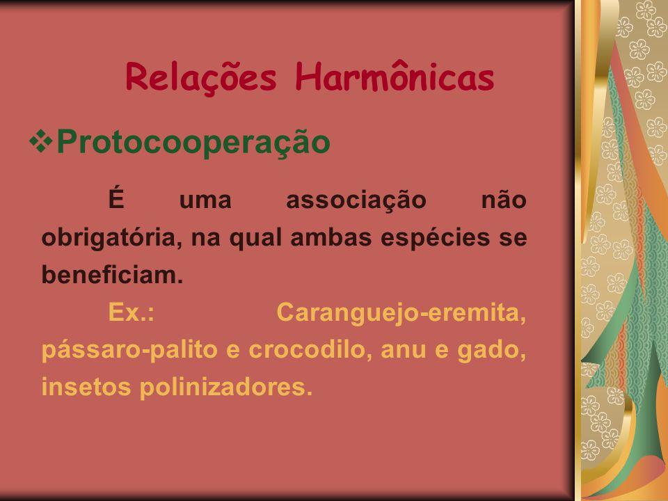 Relações Harmônicas Protocooperação