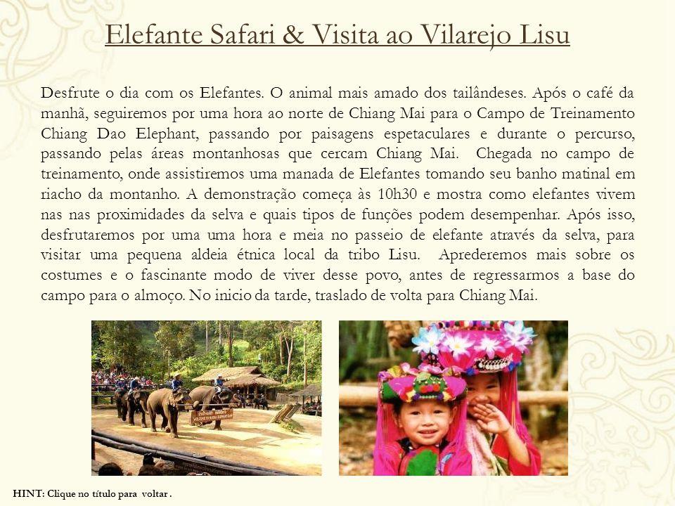 Elefante Safari & Visita ao Vilarejo Lisu