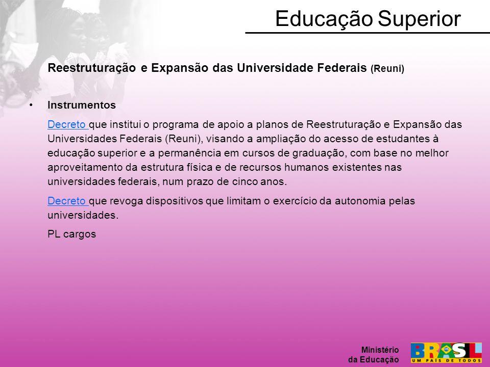 Educação Superior Ministério da Educação. Reestruturação e Expansão das Universidade Federais (Reuni)