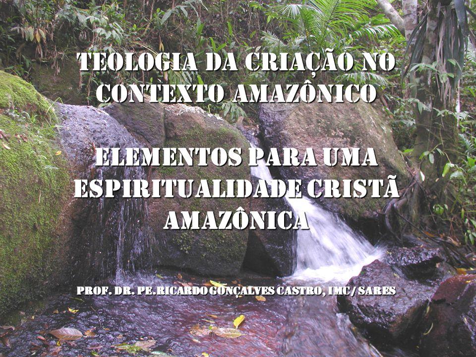 TEOLOGIA DA CRIAÇÃO NO CONTEXTO AMAZÔNICO Elementos para uma espiritualidade cristã amazônica Prof.