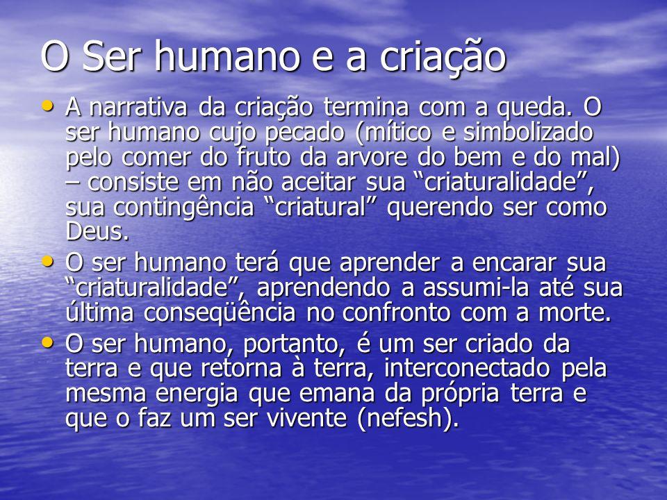 O Ser humano e a criação