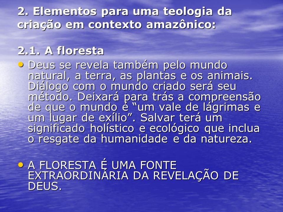 2. Elementos para uma teologia da criação em contexto amazônico: 2. 1