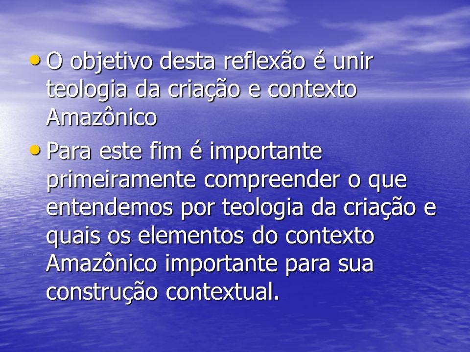 O objetivo desta reflexão é unir teologia da criação e contexto Amazônico