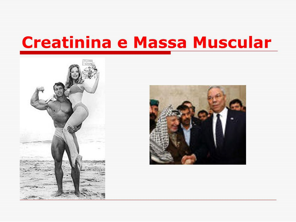 Creatinina e Massa Muscular