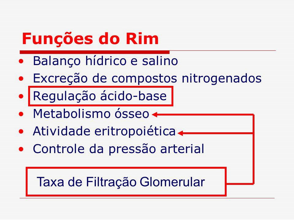 Funções do Rim Taxa de Filtração Glomerular Balanço hídrico e salino
