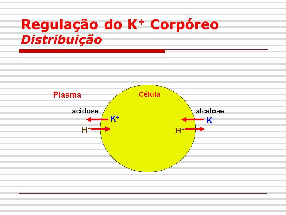 Regulação do K+ Corpóreo Distribuição