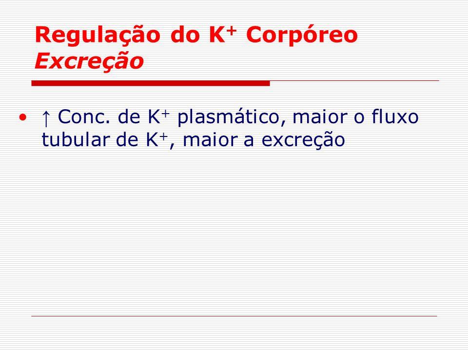 Regulação do K+ Corpóreo Excreção