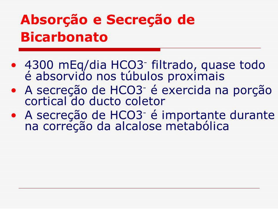 Absorção e Secreção de Bicarbonato