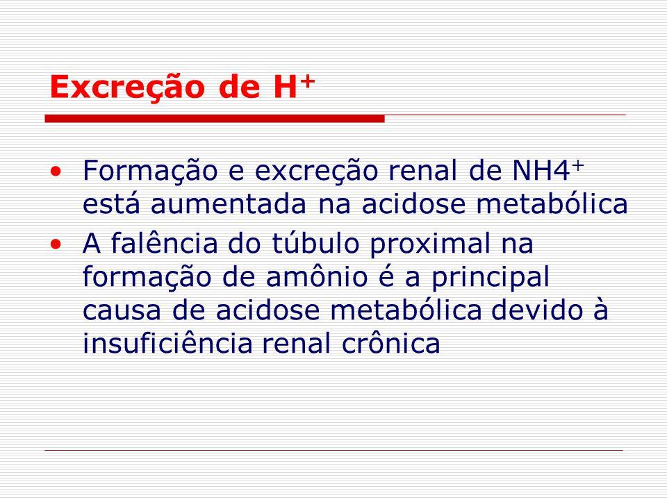Excreção de H+ Formação e excreção renal de NH4+ está aumentada na acidose metabólica.