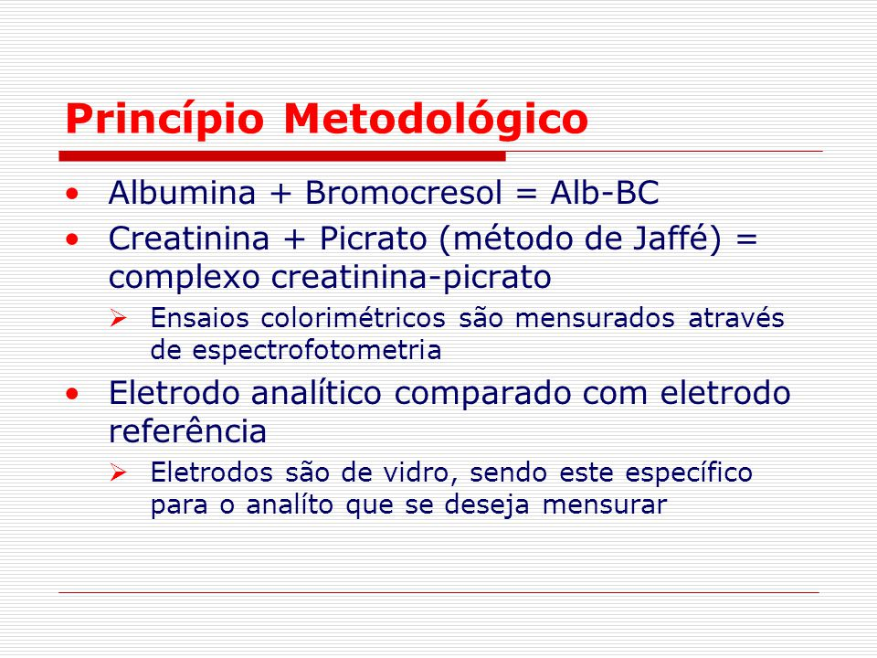 Princípio Metodológico