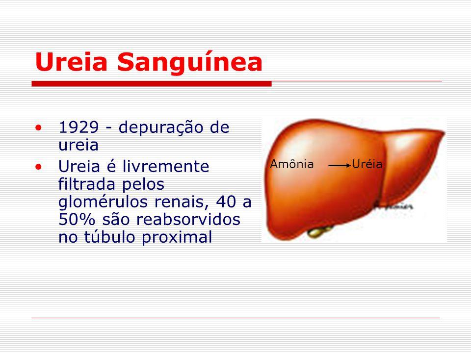 Ureia Sanguínea 1929 - depuração de ureia
