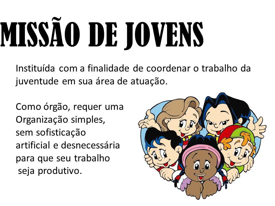 COMISSÃO DE JOVENS Instituída com a finalidade de coordenar o trabalho da juventude em sua área de atuação.