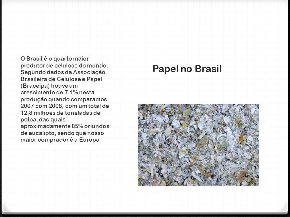 Papel no Brasil