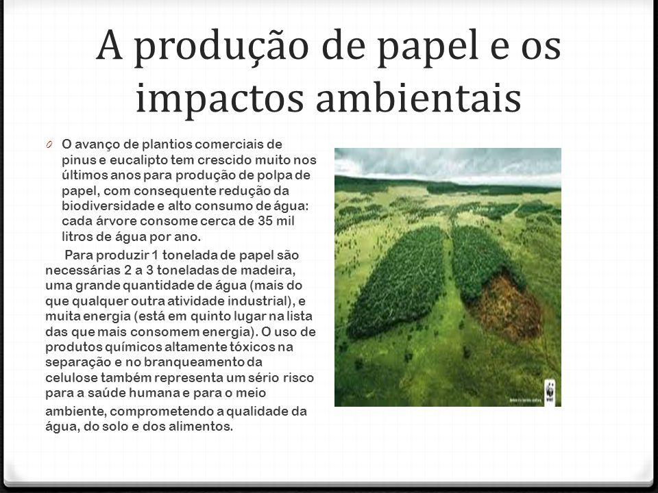 A produção de papel e os impactos ambientais
