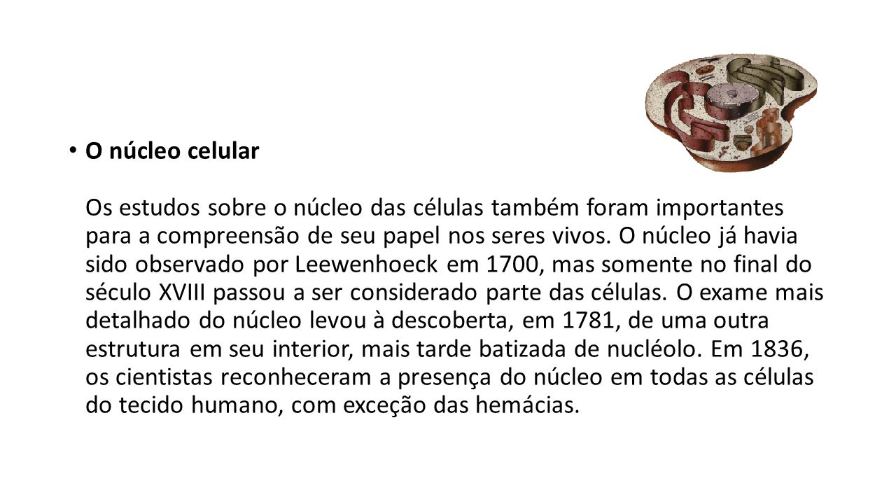 O núcleo celular Os estudos sobre o núcleo das células também foram importantes para a compreensão de seu papel nos seres vivos.