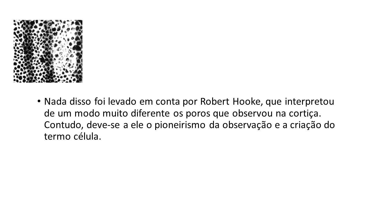 Nada disso foi levado em conta por Robert Hooke, que interpretou de um modo muito diferente os poros que observou na cortiça.