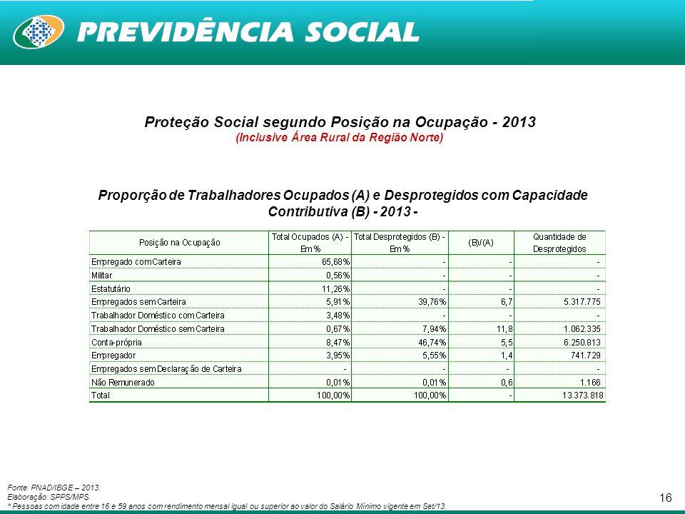 Proteção Social segundo Posição na Ocupação - 2013