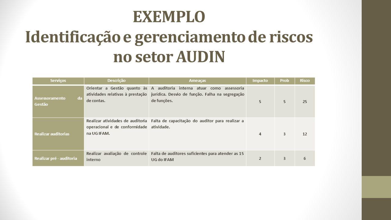 EXEMPLO Identificação e gerenciamento de riscos no setor AUDIN