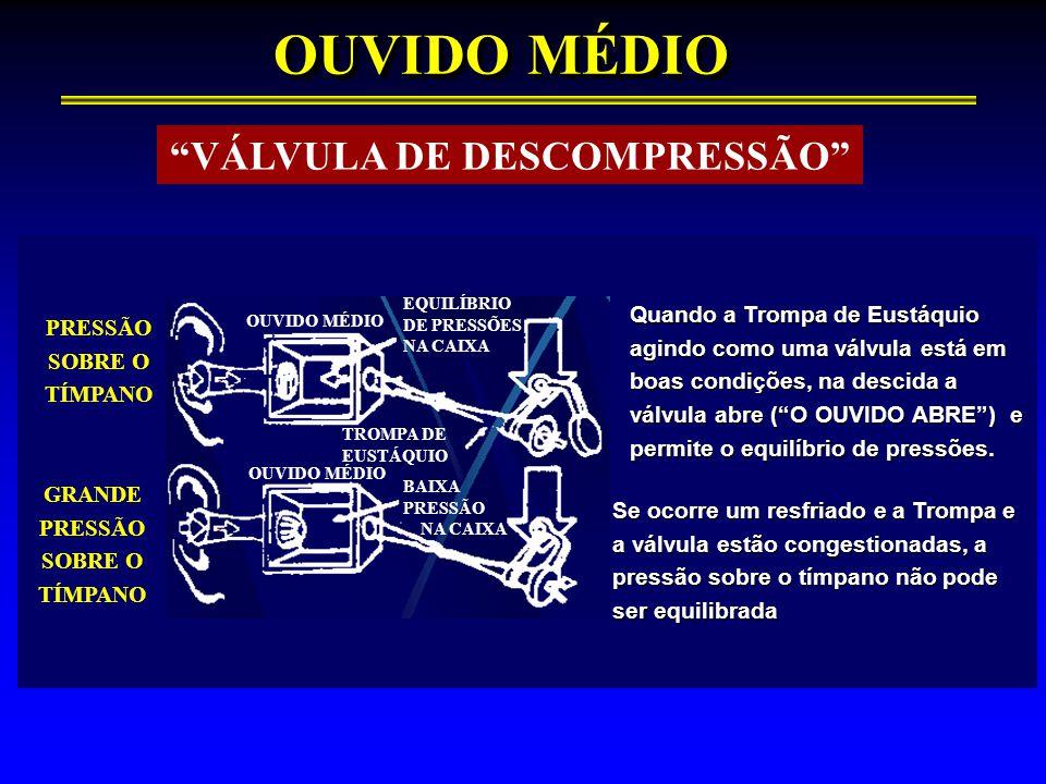 VÁLVULA DE DESCOMPRESSÃO