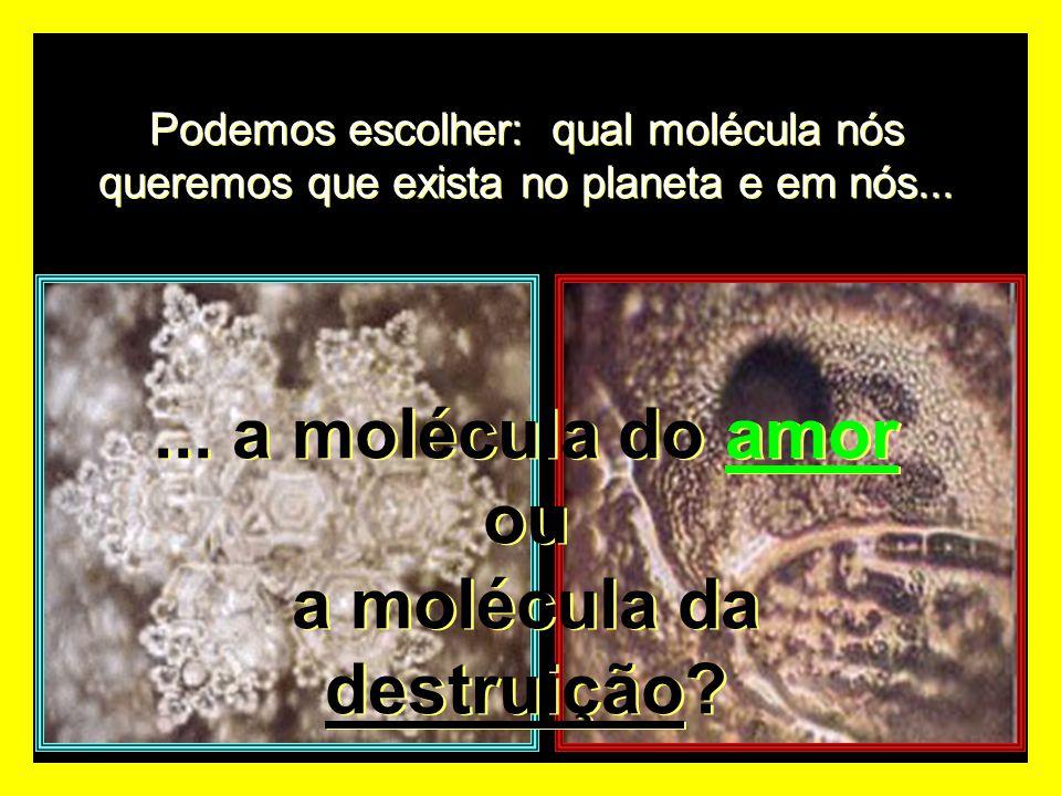 ... a molécula do amor ou a molécula da destruição
