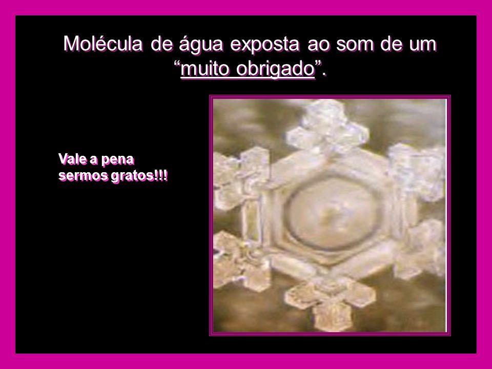 Molécula de água exposta ao som de um muito obrigado .
