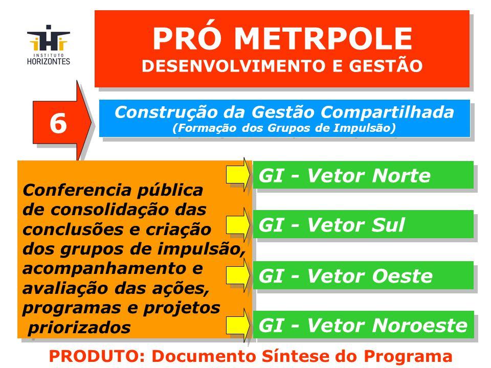 PRÓ METRPOLE DESENVOLVIMENTO E GESTÃO