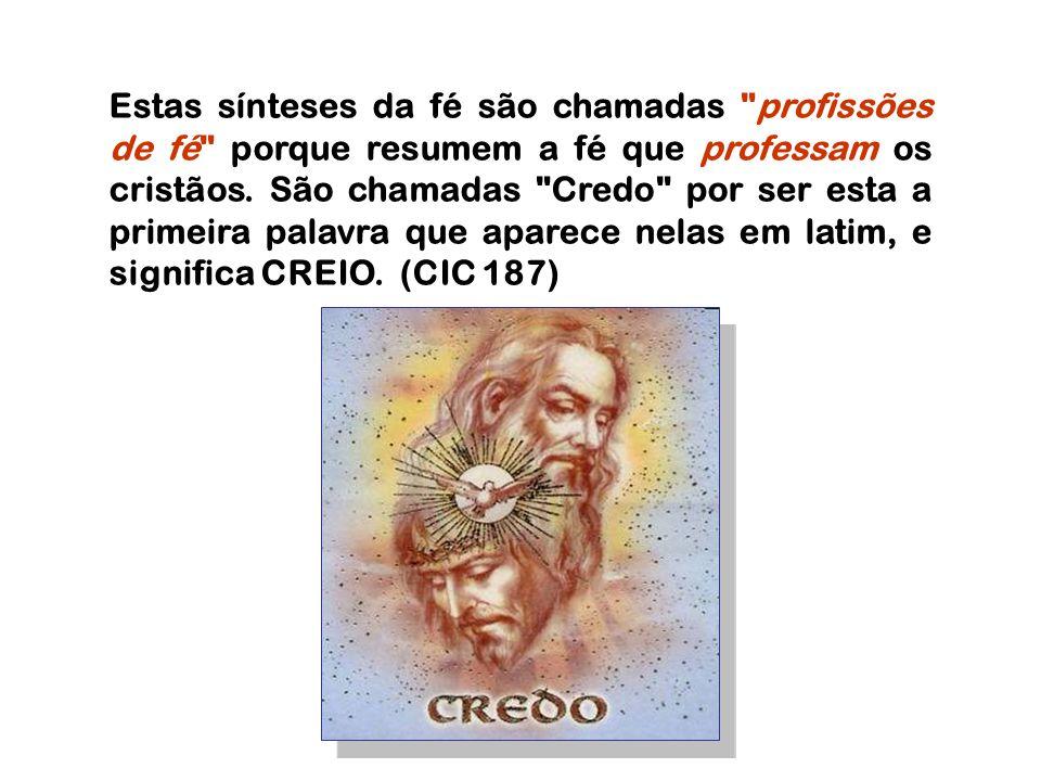 Estas sínteses da fé são chamadas profissões de fé porque resumem a fé que professam os cristãos.